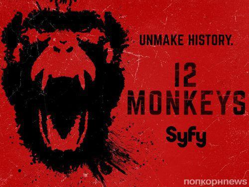 Четвертый сезон сериала «12 обезьян» станет последним
