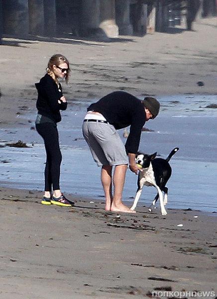 Аманда Сейфрид и Джош Хартнетт на прогулке с собаками