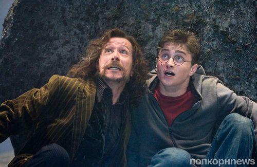 Не говорите Роулинг: отношения Гарри Поттера и Сириуса Блэка обвинили в «токсичности»