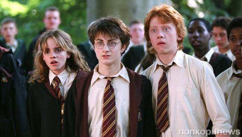 Руперт Гринт признался, что «не может смотреть на себя» в «Гарри Поттере»