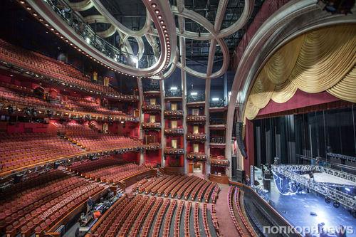 На сцене «Оскара» будет 40 000 живых роз (и 0 живых ведущих)