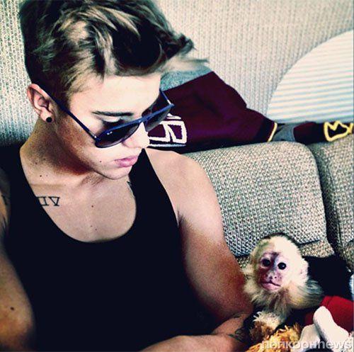 У Джастина Бибера конфисковали обезьяну