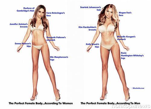 Как выглядит идеальная женщина, по мнению женщин и мужчин?