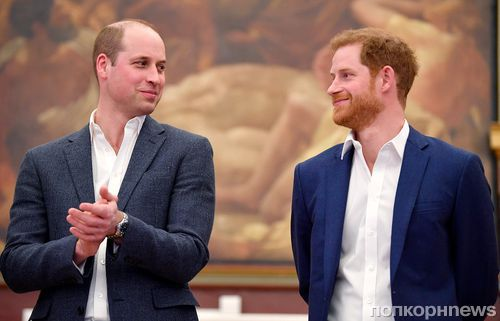 СМИ заговорили о «напряженности» в отношениях принца Гарри и принца Уильяма из-за Меган Маркл