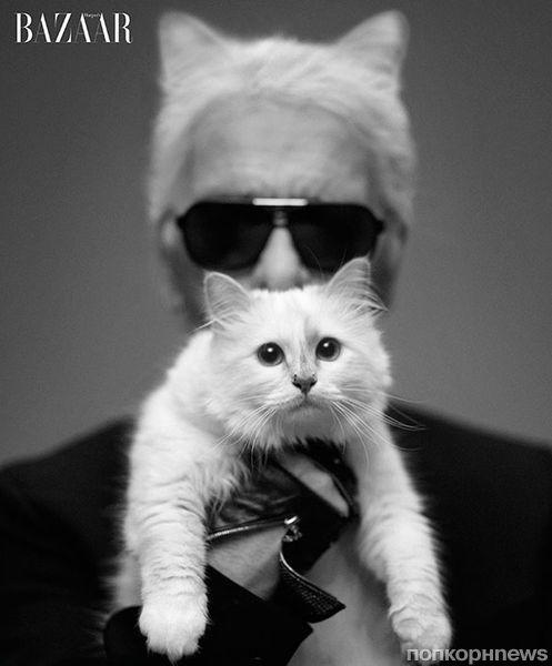 Карл Лагерфельд со своей кошкой в журнале Harper's Bazaar. Сентябрь 2012