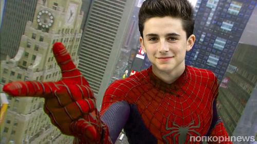 Тимоти Шаламе пробовался на роль Человека-паука в киновселенной Marvel