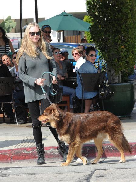 Аманда Сейфрид на прогулке с собакой в Мелроуз Плейс