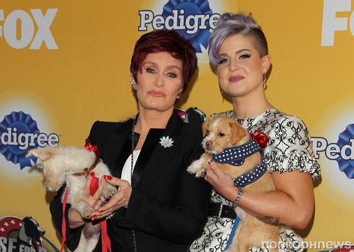 Звезды и их четвероногие друзья на благотворительном вечере Cause For Paws: An All-Star Dog Spectacular
