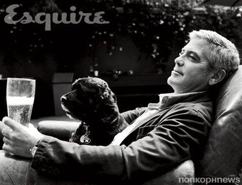 Как Джорджу Клуни с помощью фрикаделек удалось понравиться псу из приюта