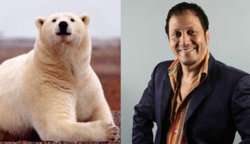 Роб Шнайдер станет полярным медведем