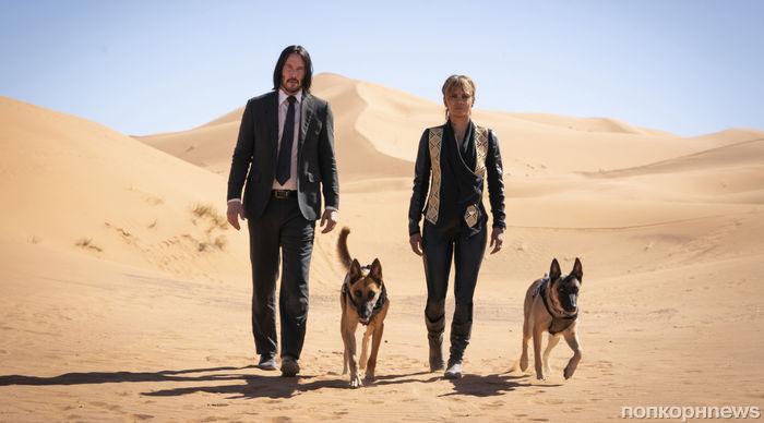 Мастер на все руки: Холли Берри дрессировала собак на съемках «Джона Уика 3»