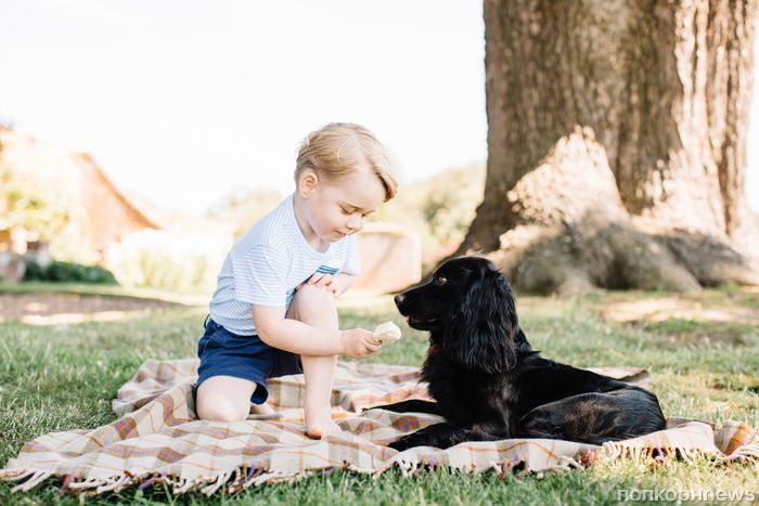 Принца Джорджа признали «детской» иконой стиля