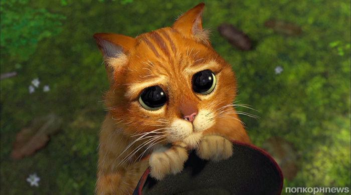 Студия Universal перезапустит «Шрека» и «Кота в сапогах» с теми же актерами озвучки