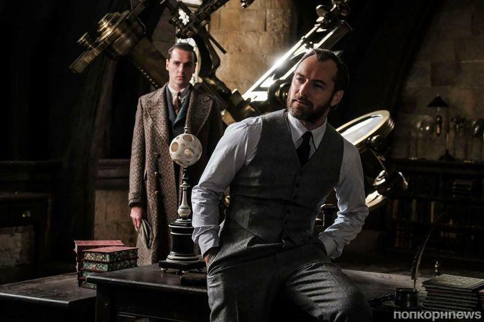 Джуд Лоу прокомментировал нетрадиционную ориентацию Дамблдора в «Фантастических тварях»