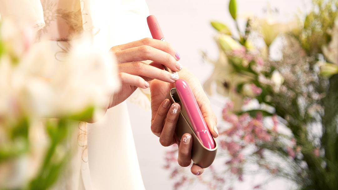 Золотой Айкос 3 с розовыми аксессуарами