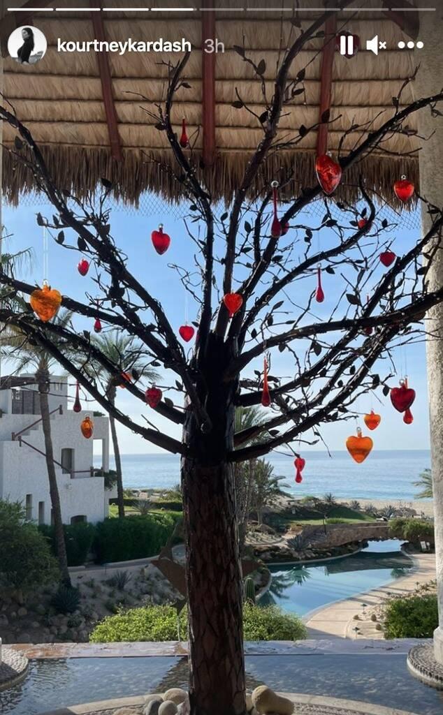 Дерево жизни